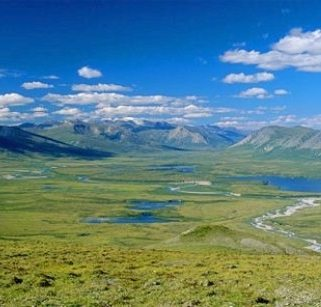 Noatak river area in Alaska
